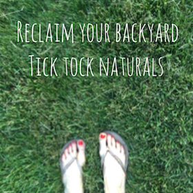 tick tock naturals organic insect repellant