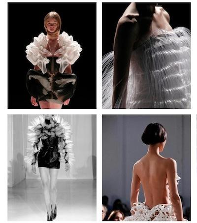 IRIS van HERPEN 2011 couture on FashionDailyMag loves brigitte segura