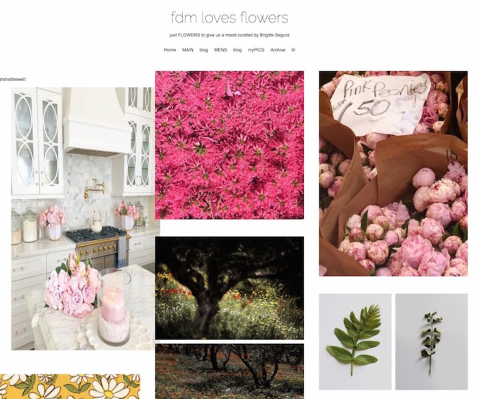 fdmloves flowers blog brigitteseguracurator fashiondailymag nyc influencer